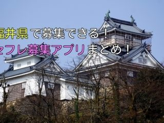 福井県で簡単にセフレ募集できるアプリ