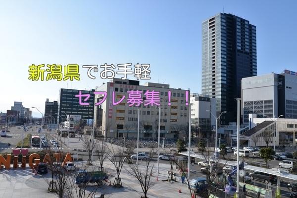 新潟県でポイントなしでセフレ募集する方法